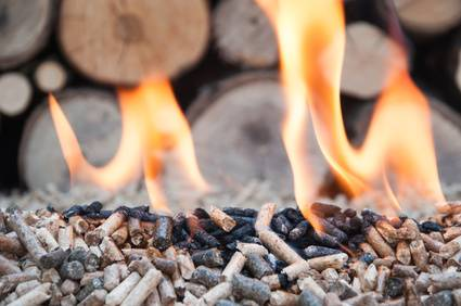 Pine and sunflower pellets in flames- stock image